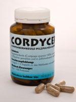 Cordyceps-Pilzpulver-Kapseln