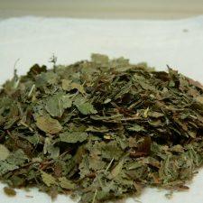 Heidelbeerblätter, BIO