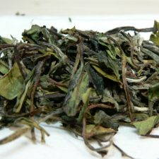 'Pai Mu Tan, ''''weißer Tee'''', BIO'