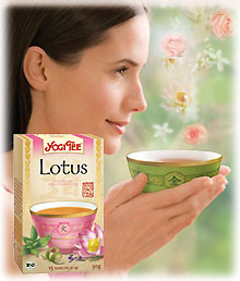 Yogi Tao- Tee Lotus, BIO